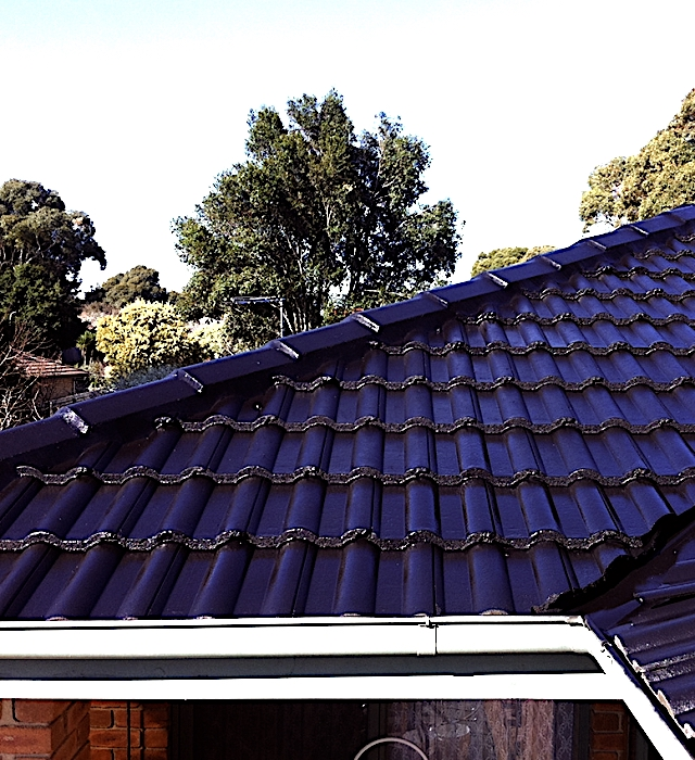 Roof Restoration Tips For Your Newcastle Business Sydney Sharkacorp